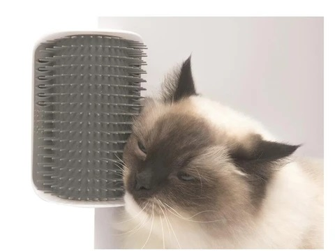 cat_self_groom_brush