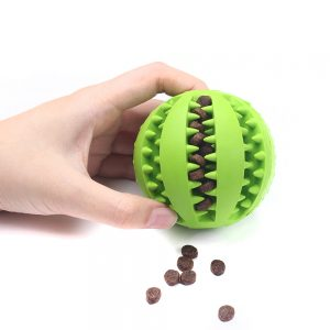 Funny Dog Fun & Food Ball