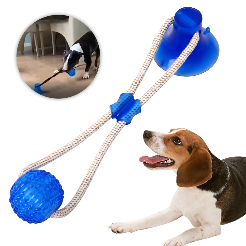 suction-cup-dog-toy-blue