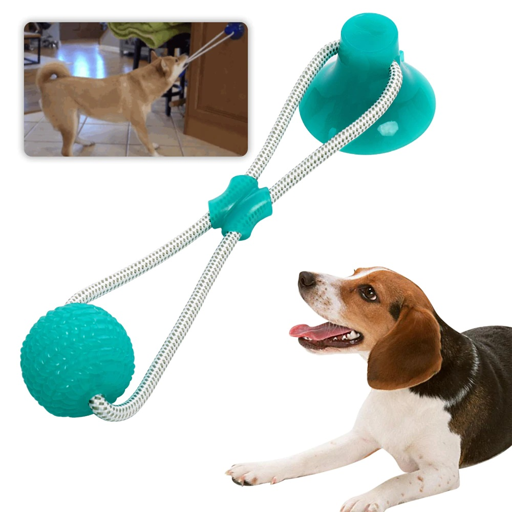 suction-cup-dog-toy-green