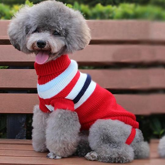 winter-dog-sweaters-red